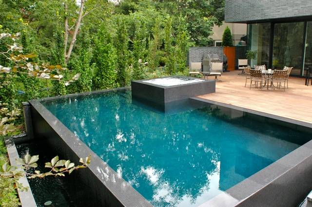Overflow Swimming Pool Design Enchanting Stunning Overflow Swimming Pool Design Gallery  Interior Design . 2017